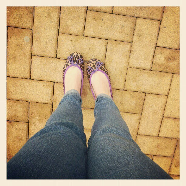#todayimwearing new @pballerinas animal print pumps and @hm @hmunitedkingdom jeans (Taken with Instagram)