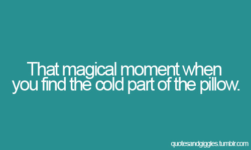 That magical moment when you find the cold part of the pillow.
