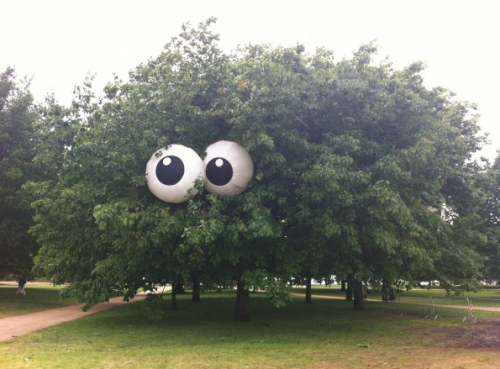 Tree With Giant Eyeballs What are you looking at? Leave!