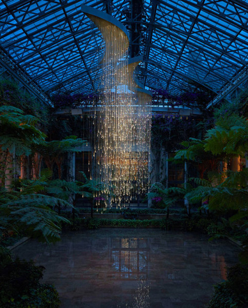 laughingsquid:  Light, Installations at Longwood Gardens by Bruce Munro