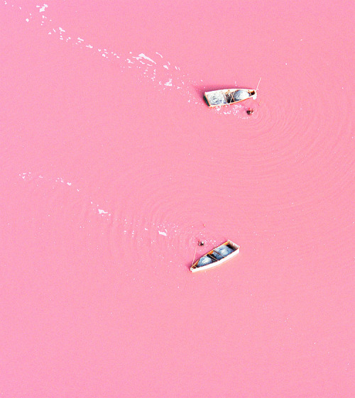 "Lake Retba in Senegal The bizarre colour is caused by high levels of salt - with some areas containing up to 40% of the condiment. Michael Danson, an expert in extremophile bacteria from Bath University, said: ""The strawberry colour is produced by salt-loving organism Dunaliella salina. ""They produce a red pigment that absorbs and uses the energy of sunlight to create more energy, turning the water pink. ""Lakes like Retba and the Dead Sea, which have high salt concentrations, were once thought to be incompatible with life - hence the names. But they are very much alive."""