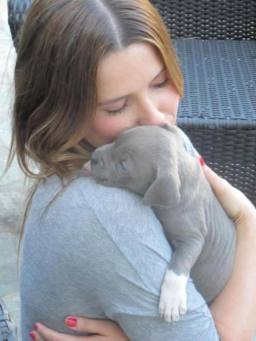 Sophia Bush and Dog