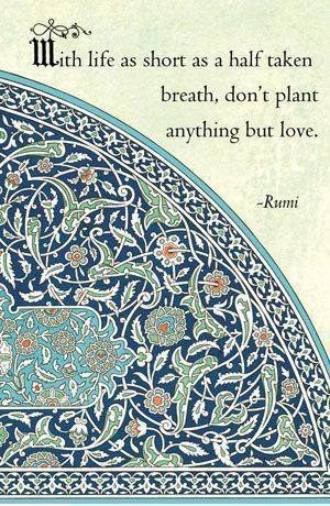 uhhh i'm drunk on rumi again