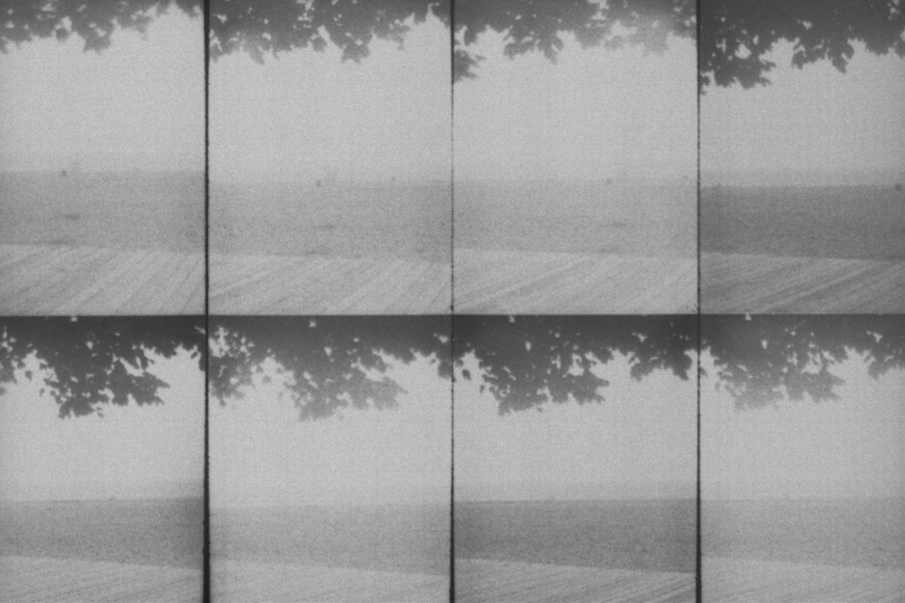 thejunipertree:  Morning fog, 2012