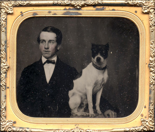 tuesday-johnson:  ca. 1860-70's, [ambrotype portrait of a young gentleman and his dog] via Charles Schwartz Photography
