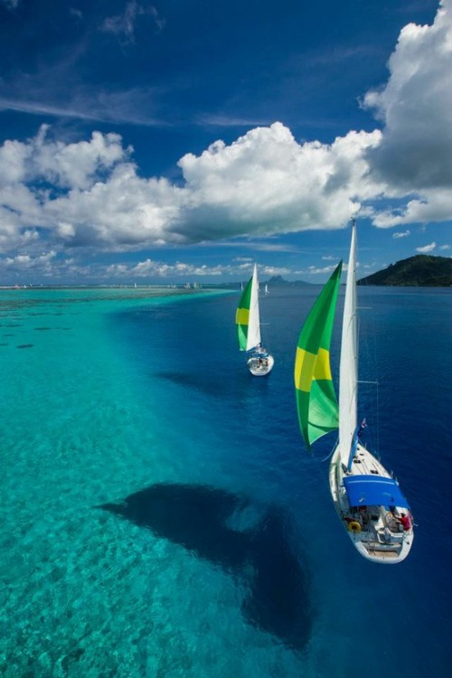dontcallmebetty:  via At the Beach / Raiatea - French Polynesia
