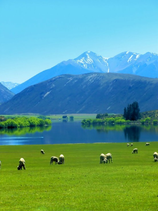 lovely-bazaar:  Lake Pearson, New Zeland.
