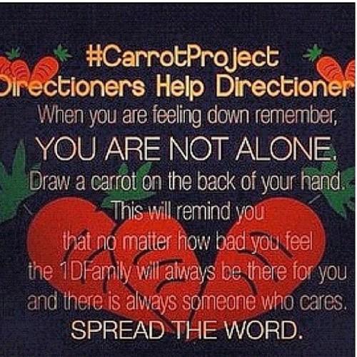 #onedirection #carrotproject (Taken with Instagram)