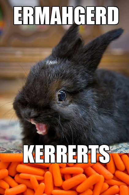 Berks rabbit The Meme Spot