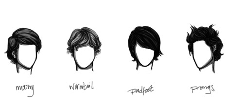 anxiouspineapples:  marauder hair