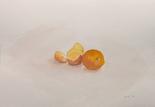 Tangerines, watercolour, 140 lb. cold pressed paper, 18 x 26 cm, 2012 SOLD