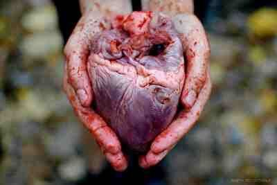 generationofmodifications:  I give you my heart.