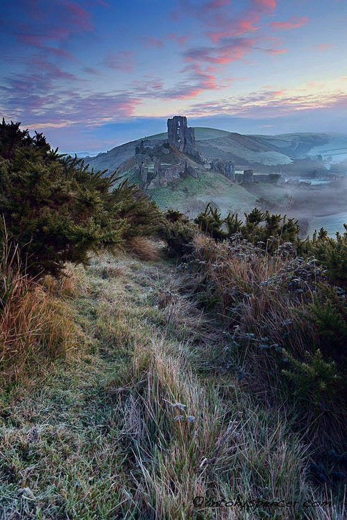 enchantedengland:    A rather stunning and fantastical view of Corfe Castle in the winter sunlight. The Castle is a fortification built by His Ancientness William the Conqueror during the eleventh century; and stands above the village with the same name in the county of Dorset, England.     For visitor information, what's on, etc look no farther than here (photo by Anthony Spencer on johnstoysoldiers.blogspot.com)