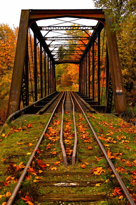 Autumn Railroad Bridge, Vermont photo via touchn2btouched