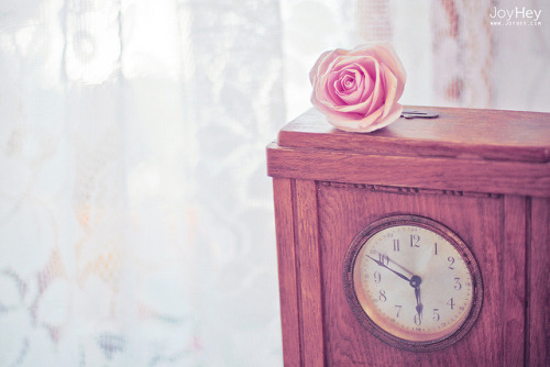Rose Time by JoyHey on Flickr.It's time to bloom.