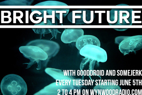 Bright Future is on WynwoodRadio.com again tomorrow from 2-4pm with Gooddroid and Somejerk! Make sure you tune in and tell everyone else too.  Its gonna be double awesome.