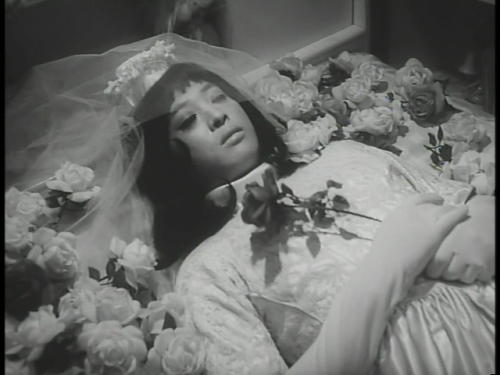 frenchtwist:  via in-circles:  Moving Showcase | Funeral Parade of Roses