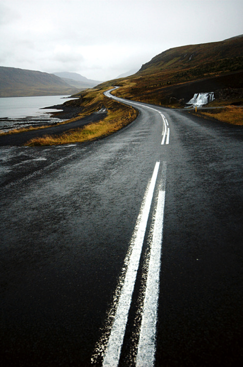 weshallneverstop:  Long winding road  |  João Almeida