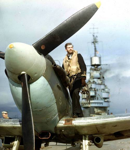 circuitry:  Seafire pilot on HMS Indomitable, 1943.