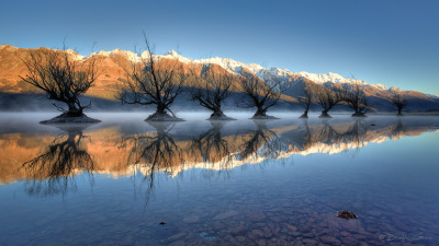 Guardians of the Lake, New Zealand by Brad Grove