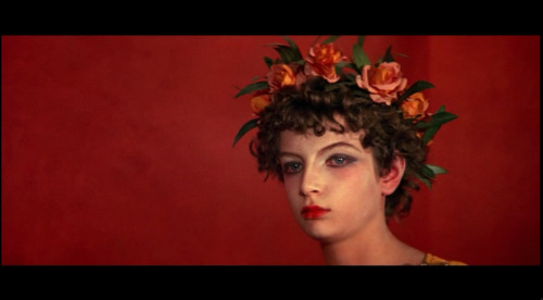"I watched ""Fellini Satyricon"" last night and this boy (dressed as a girl) in this movie totally reminded me of Tavi/Stylerookie, is that weird?  Anyway if you like weird movies check it out, its playing on instant.  Its also a very beautiful movie with awesome set design/clothing/makeup."