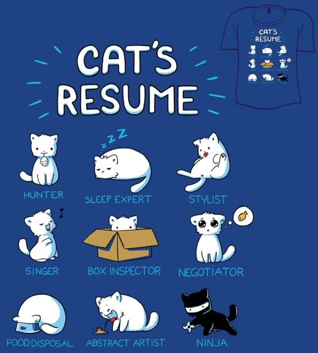 laughingsquid:  Cat's Resume