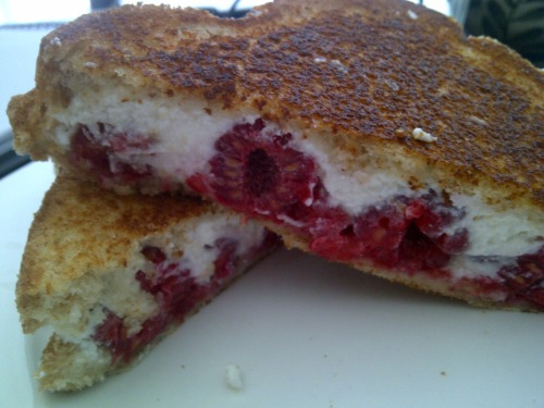 Food experiment of the day: Grilled sandwich with ricotta cheese, raspberries, and a drizzle of honey. Verdict: yum - maybe next time I'll had some greens like sweet basil or mint.