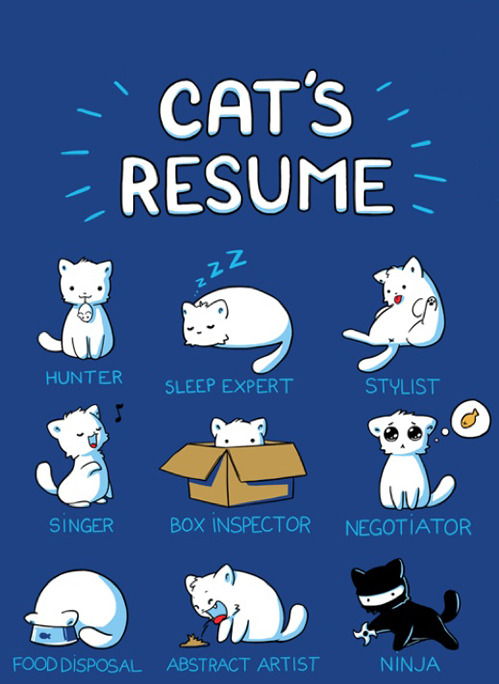 nevver:  Resumé  To be fair my cat is really not a good box inspector, for a cat. Nor an abstract artist - this is a very good thing - and slightly clumsy for a ninja… But he is REALLY good at singing and food disposing. And sleeping. Sometimes he washes the dog a bit so he gets extra stylist points. This has been an educational post about my cat. :3