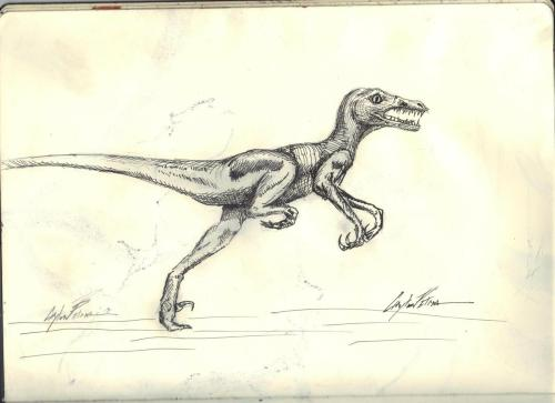 fuckyeahmoleskines:  velociraptor!  http://peaches1x.tumblr.com/  DONT LET NIC SEE YOU.