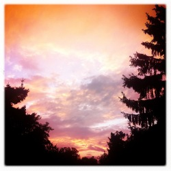 asseenonmyiphone:  Look at the Sky