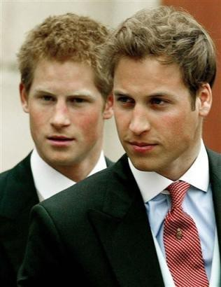 prince harry and prince william aka my brothers