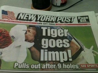 Sneaky dogs over at New York Post