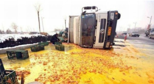 Truck Full of Eggs Tips Over