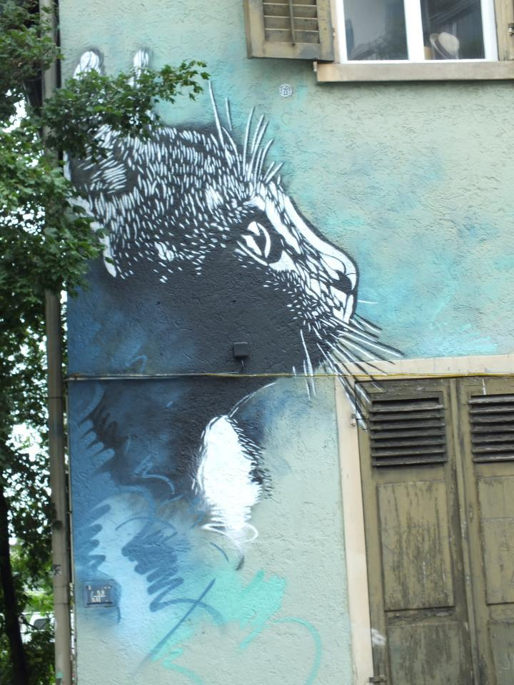 kaddlah:  C215 Zürich https://www.facebook.com/photo.php?fbid=10150935379469536&set=a.10150612199814536.400402.151888344535&type=1&theater