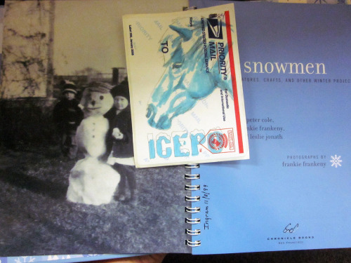 """Icepo 84"" was placed in Snowmen: Snow Creatures, Crafts, and Other Winter Projects by Peter Cole, Frankie Frankeny and Leslie Jonath, Martinsburg Community Library, Martinsburg, Pennsylvania, U.S."