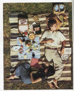 wildinfields:  Vintage Picnic- photo from September 1976 issue of Scientific American
