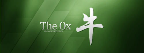 The Ox Facebook Cover