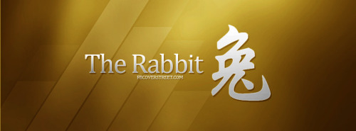 The Rabbit Facebook Cover