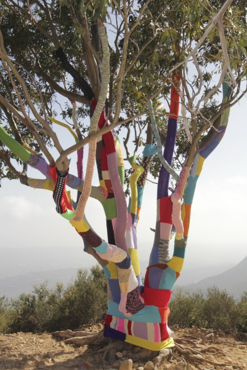 stitchesandpurls:  (via babukatorium:Collaborative yarn bombing 2.6 miles from and 2,500 feet above civilization via LR4: Yarn Bomb Complete | 12for2012)