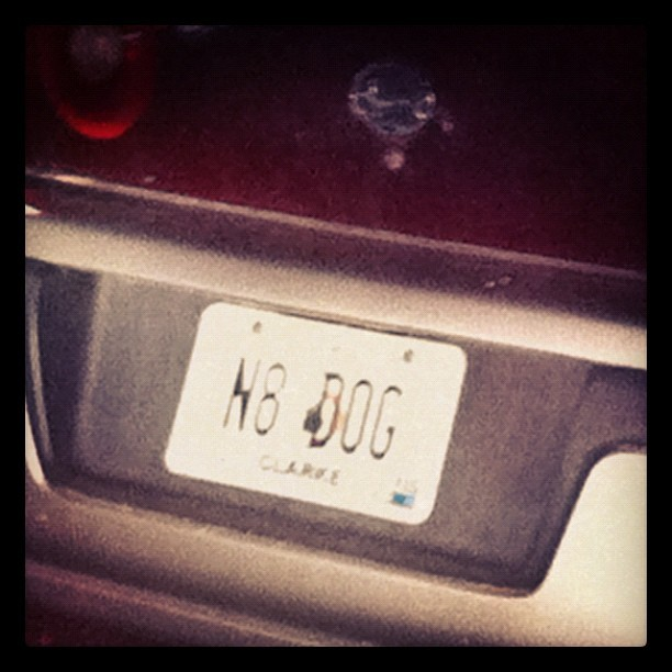 More Georgia #licenseplates #RIP #natedogg (Taken with Instagram)
