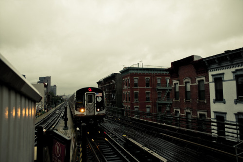 rainy days / brooklyn