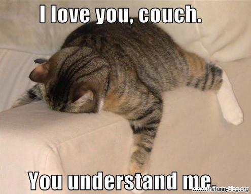 epicmeme:  I love you, couch!