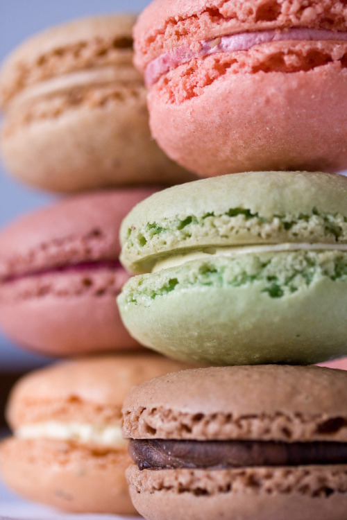 Multi-flavored Macaroons!