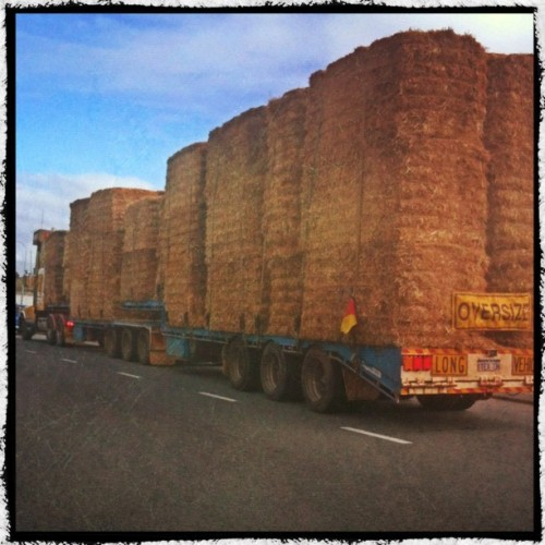 #hay #truck #semitrailer #oversize #PhotoToaster #makebeautiful #ink361  (Taken with Instagram at Leach Hwy Kewdale)