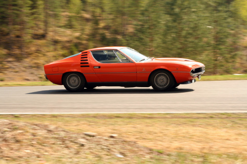 carpr0n:  No intention of going back Starring: Alfa Romeo Montreal (by s U o)