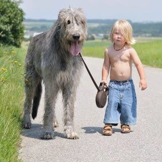 funfoever:  the dog and the boy (via We need more fun for our boring life | TheFailBlog.org)