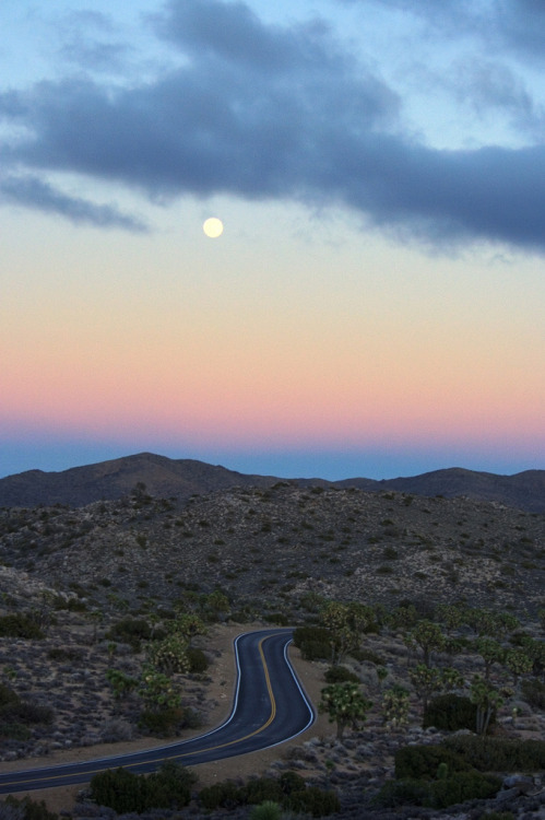 mer-de:  Moonrise Over Keys View, Joshua Tree National Park, California
