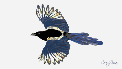 European Magpie + William Morris patterning
