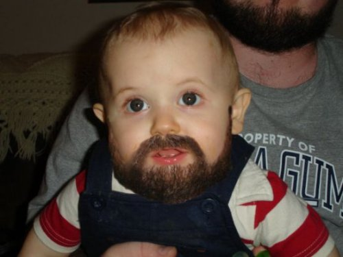 Bearded Baby His formula is beef jerky flavored.
