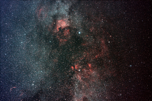 Skywatcher Captures Spectacular Milky Way Photo Mosaic  The northern constellation Cygnus and two nebulas named after North America and a pelican come into brilliant focus as part of astrophotographer's Milky Way mosaic.